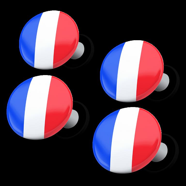 racebibup magneti calamite pettorali gara bandiera francese